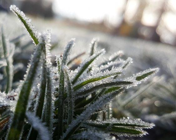 Πρωτοχρονιά 2019 με χιόνια και πολύ κρύο ΕΜΥ