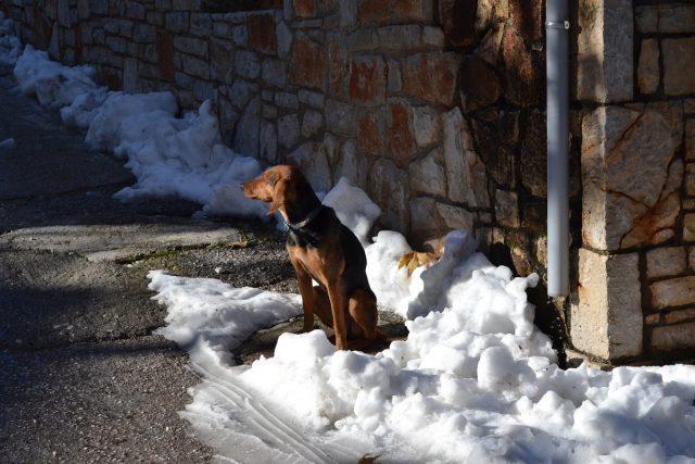 Παγωμένες αέριες μάζες, χιόνια στην Αττική