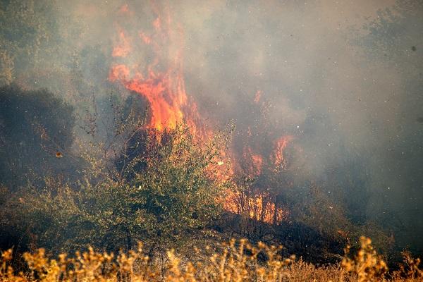 Πυρκαγιά σε εξέλιξη στη λίμνη Καϊάφα - Πρόκειται για τη δεύτερη σε δύο μέρες