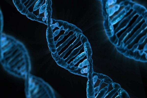 DNA: Δημιουργήθηκε για πρώτη φορά με 8 γράμματα του γενετικού αλφαβήτου