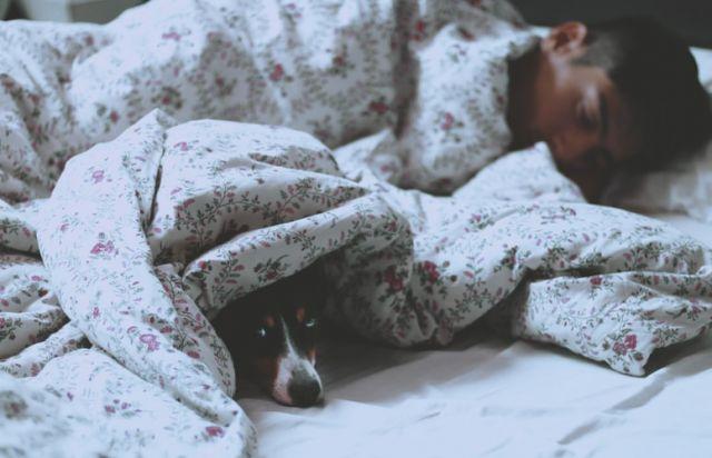 αγόρι που κοιμάται με τον σκύλο του