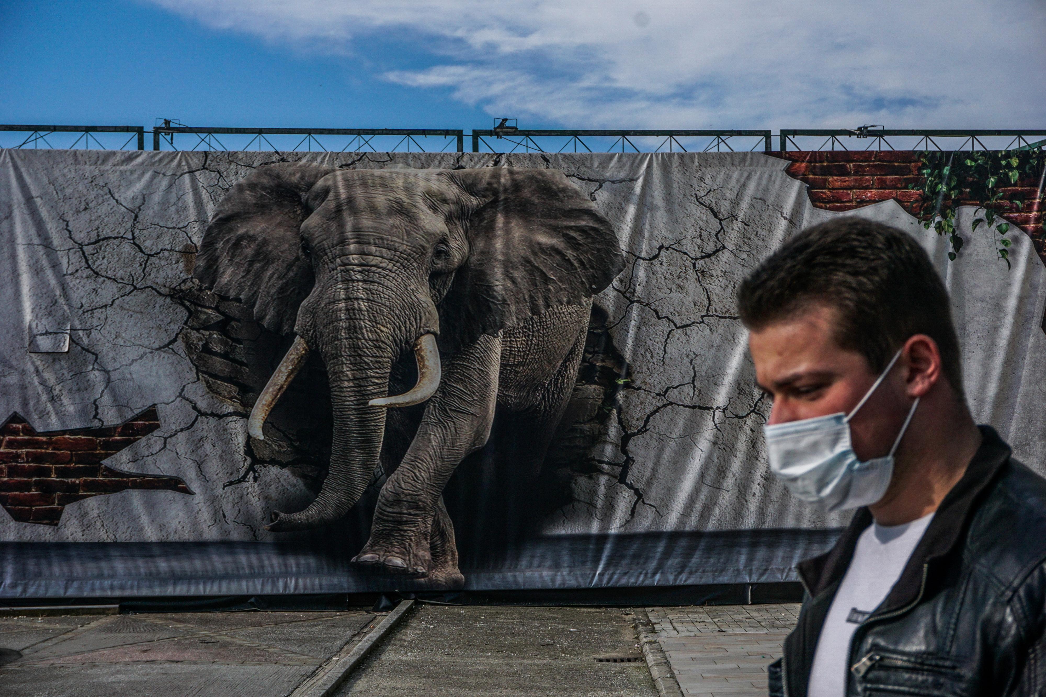 Γκράφιτι με ελέφαντα