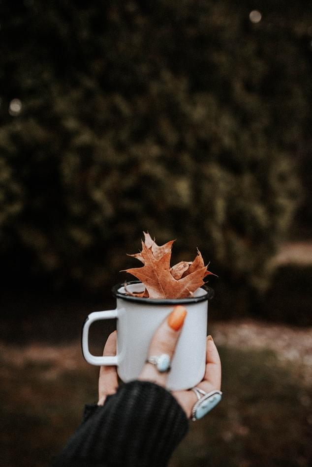 Καφές φύλλα κούπα