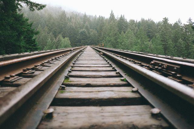 tsexia treno